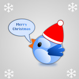 Blue bird singing merry christmas on grey background