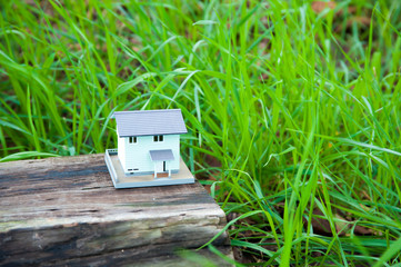 自然の中のミニチュアの家