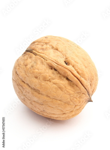 Brown and fresh walnut on white background