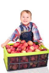Kleiner Junge mit Apfelernte