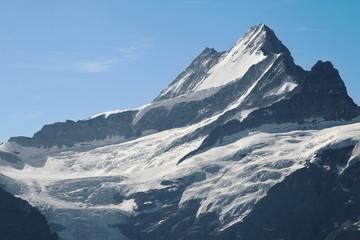 Schreckhorn peak