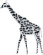 Постер, плакат: жираф