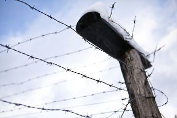 Barbed wire, remains of iron curtain in winter with snow
