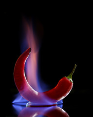 Red hot chili pepper on fire on black background