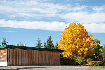Garage with autumn tree