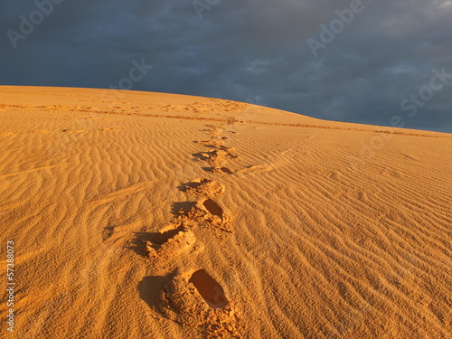 Footprints on Desert