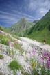 parc national dela vanoise