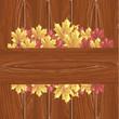 листья клёна на деревянных брусках
