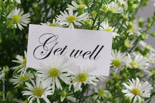 Get well card with fresh chamomile flowers