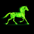 Green fire horse.