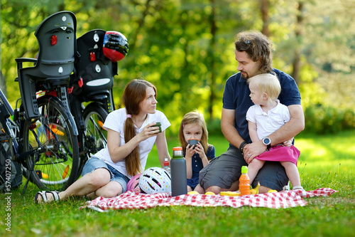 Family of four picnicking in the park