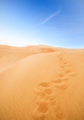 footsteps in desert