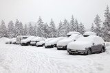 Winter parking