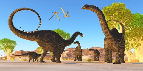 Apatosaurus Forest