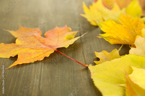 Bright autumn leafs on wooden table