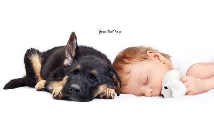 Sleeping Baby Boy with toy dog and puppy.