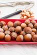 fruits of hazelnut