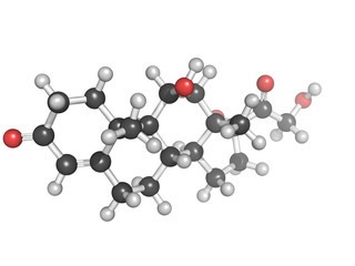 Cortisol ball and stick model