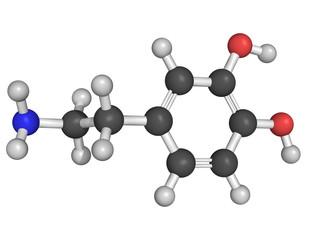 Dopamine neurotransmitter molecule