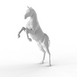 Illustration of a white horse isolated on a white background