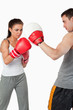Young female practicing boxing