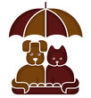 Cat and dog under an umbrella