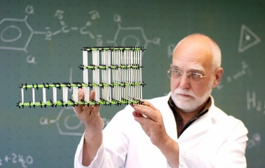 Teacher showing molecules to class
