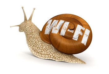 Snail and Wireless Symbol (clipping path included)