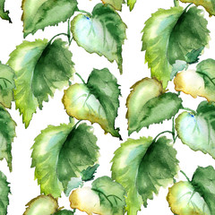 Seamless wallpaper with Stinging nettle