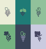 Grape with leaf. Logo templates set. Vector elements for design