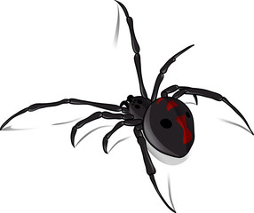 Black Widow Vector 2