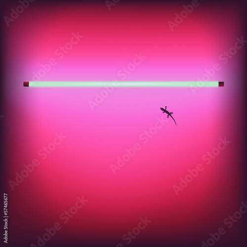 Neon sexy shop bar signboard - vector Eps10 illustration.