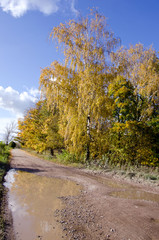 rural autumn bad gravel road after rain