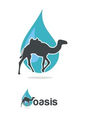 water & camel