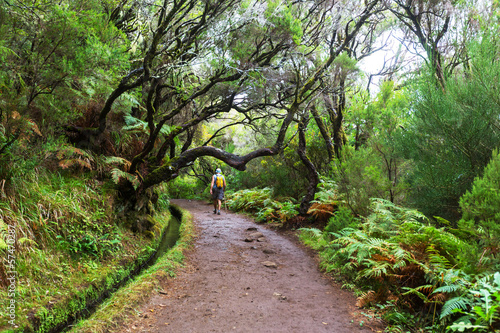 Hike on Madeira