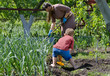 Mother and son working in the vegetable garden