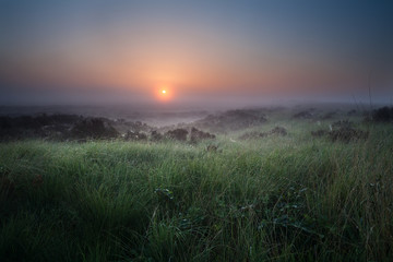 misty calm sunrise over swamp with heather