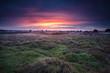 dramatic sunrise over heather land