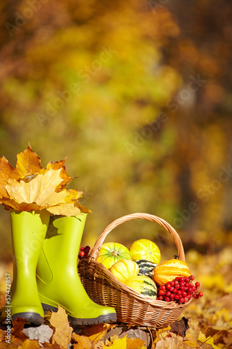 Autumn gardening background