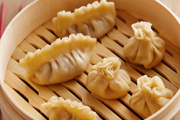 Homemade dim-sum asian dumplings