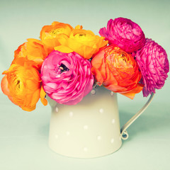 Colorful persian buttercups flowers in watering cam on vintage b