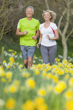 Smiling senior couple jogging in sunny daffodil field