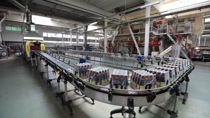 The brewery. Packaging of bottles moving on conveyor.