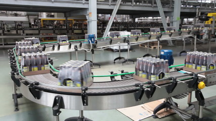The brewery. Packaging of bottles moving on conveyor