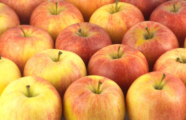 Crop of many ripe red and yellow apples as background
