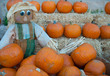 halloween pumpkins and straw doll