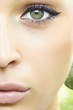 Beautiful green eye of woman. beauty face. make-up
