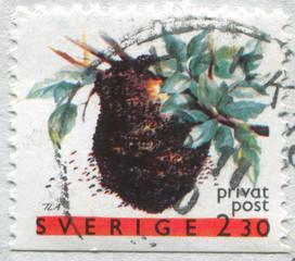 Apiary hive