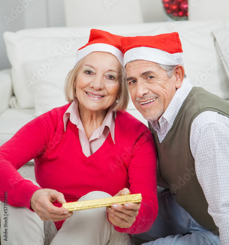 Smiling Senior Couple With Christmas Present
