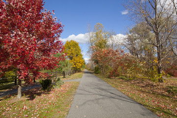 The Ashuwillticook Rail Trail